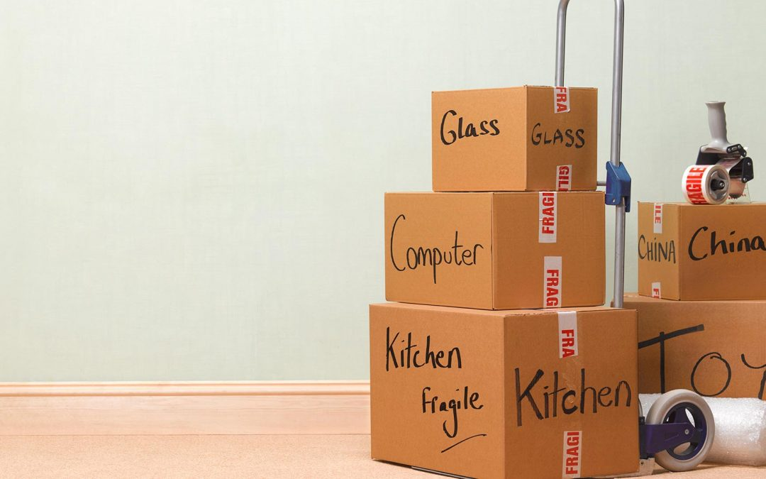 Advantages of Hiring a Professional Removals Service in Paignton