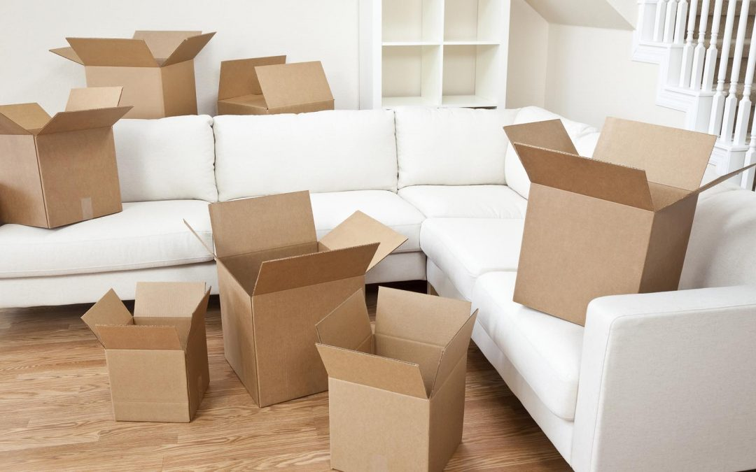 Why Should You Hire Professional House Removals in Plymouth?